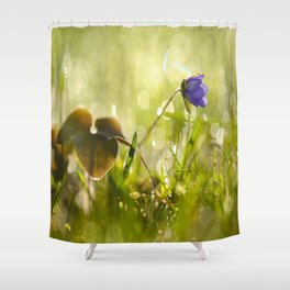 Beautiful spring - first flower little anemone with beautiful bokeh in green background Shower Curtain