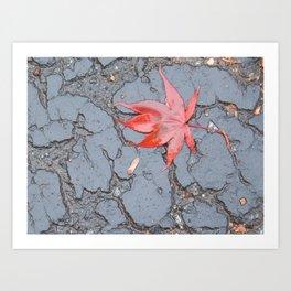 Wet Leaf on Blacktop Art Print