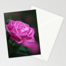Pink Rose Mystery Stationery Cards