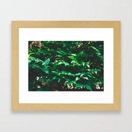 Garden leaf jungle Framed Art Print