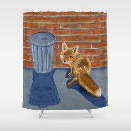 Looking for dinner, urban fox Shower Curtain