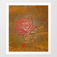 A Rose Series I Art Print
