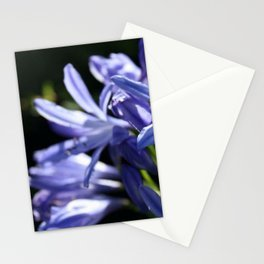 Agapanthus in focus Stationery Cards