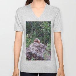 Groundhog on a Rock Unisex V-Neck