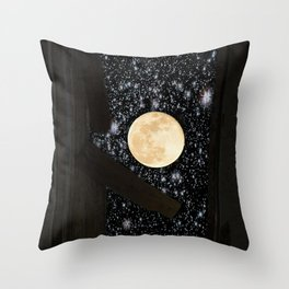 (Rustic) The Door into Space Throw Pillow
