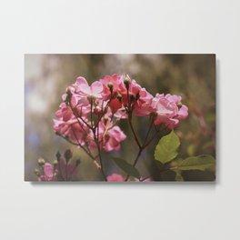 Flower XVII Metal Print