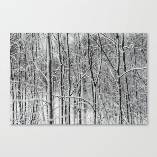 Winter gris Canvas Print