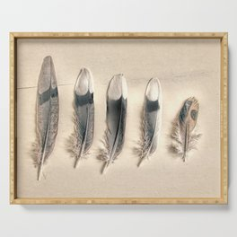 Dove Feathers Still Life Modern Cottage Modern Country Matted Picture USA A129 Serving Tray