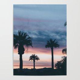 Palm Tree Sky Sunset Poster