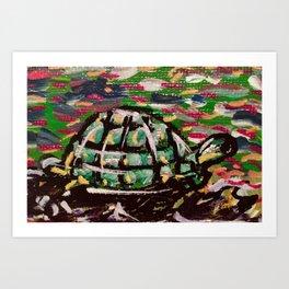 Turtle Power Art Print