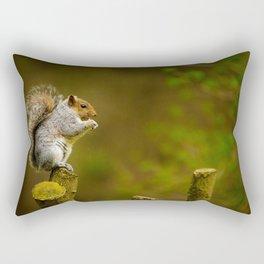 Cute Squirrel (Color) Rectangular Pillow
