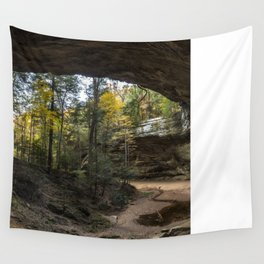 ash cave pano Wall Tapestry