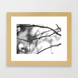 Morning dew in Black and White Framed Art Print