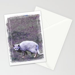 Cautious cat wary of stranger ... me! Stationery Cards
