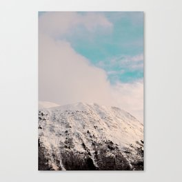 Black, White & Turquoise Winter Canvas Print