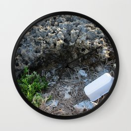 Purity and Pollution Wall Clock