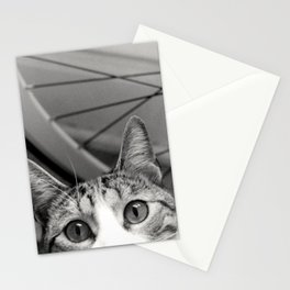 Thomy Stationery Cards
