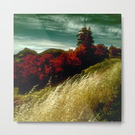Golden Wheat By Red Pines With Green Sky Metal Print