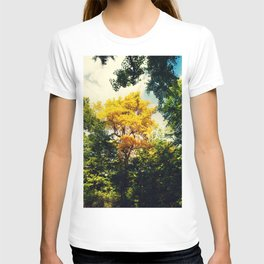 fall in Central Park T-shirt