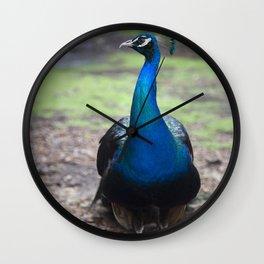 Peacock! Wall Clock