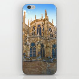 Leon Cathedral iPhone Skin