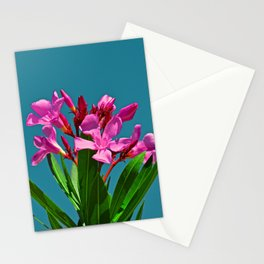 Pretty in pink under turquoise sky Stationery Cards