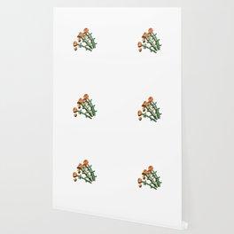 Shady Lady Wallpaper