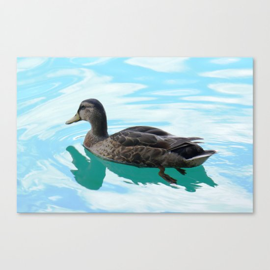 duck and lake Canvas Print