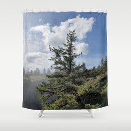 Gnarled Tree Against Blue Sky and Clouds, Beautiful Landscape of Old Tree Shower Curtain