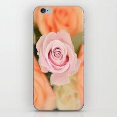 Summer Roses iPhone & iPod Skin