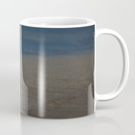 Two Pied Oyster Catchers Coffee Mug