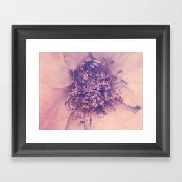 Romantica in Pastel Framed Art Print