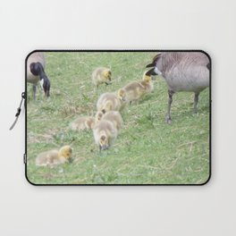 Baby Canadian Geese, Wild Geese, Animals in the Wild Laptop Sleeve