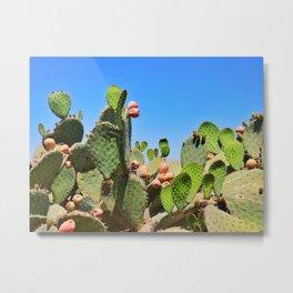 Mexico 41 Metal Print
