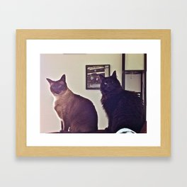 Statue Cats... Framed Art Print