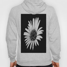 Daisy Delight in BW Hoody
