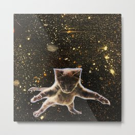 Kitten. In. Space. Metal Print