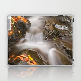 Glen Artney Stream Laptop & iPad Skin