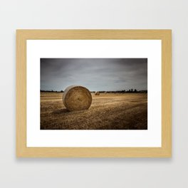 Bales of hay Framed Art Print