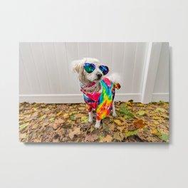 Hippie Dog Metal Print