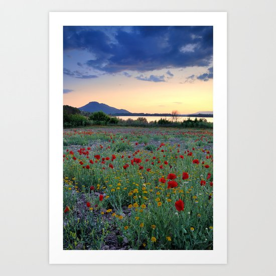 Red Poppies. Sunset at the lake Art Print