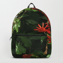 Fort Fisher Butterfly Backpack