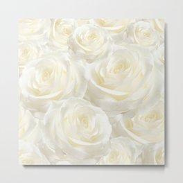 Ivory Roses Metal Print