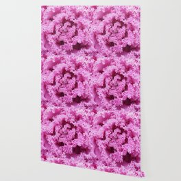 Pink Frosted Flower Wallpaper