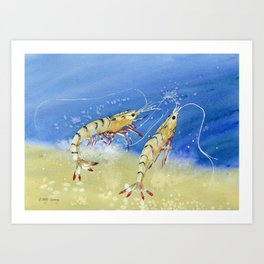 Swimming Together - Shrimp Art Print