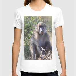 """Hey, whassup,"" said the Baboon T-shirt"