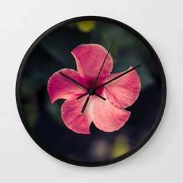 Flower Photography by Tra Tran Wall Clock