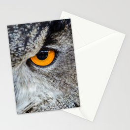 NIGHT OWL - EYE - CLOSE UP PHOTOGRAPHY - ANIMALS - NATURE Stationery Cards
