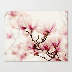 Japanese Magnolia I Canvas Print