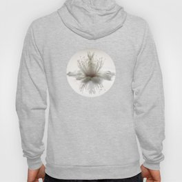 floating into the light Hoody